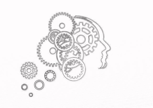 L'action du CBD sur le cerveau et le corps