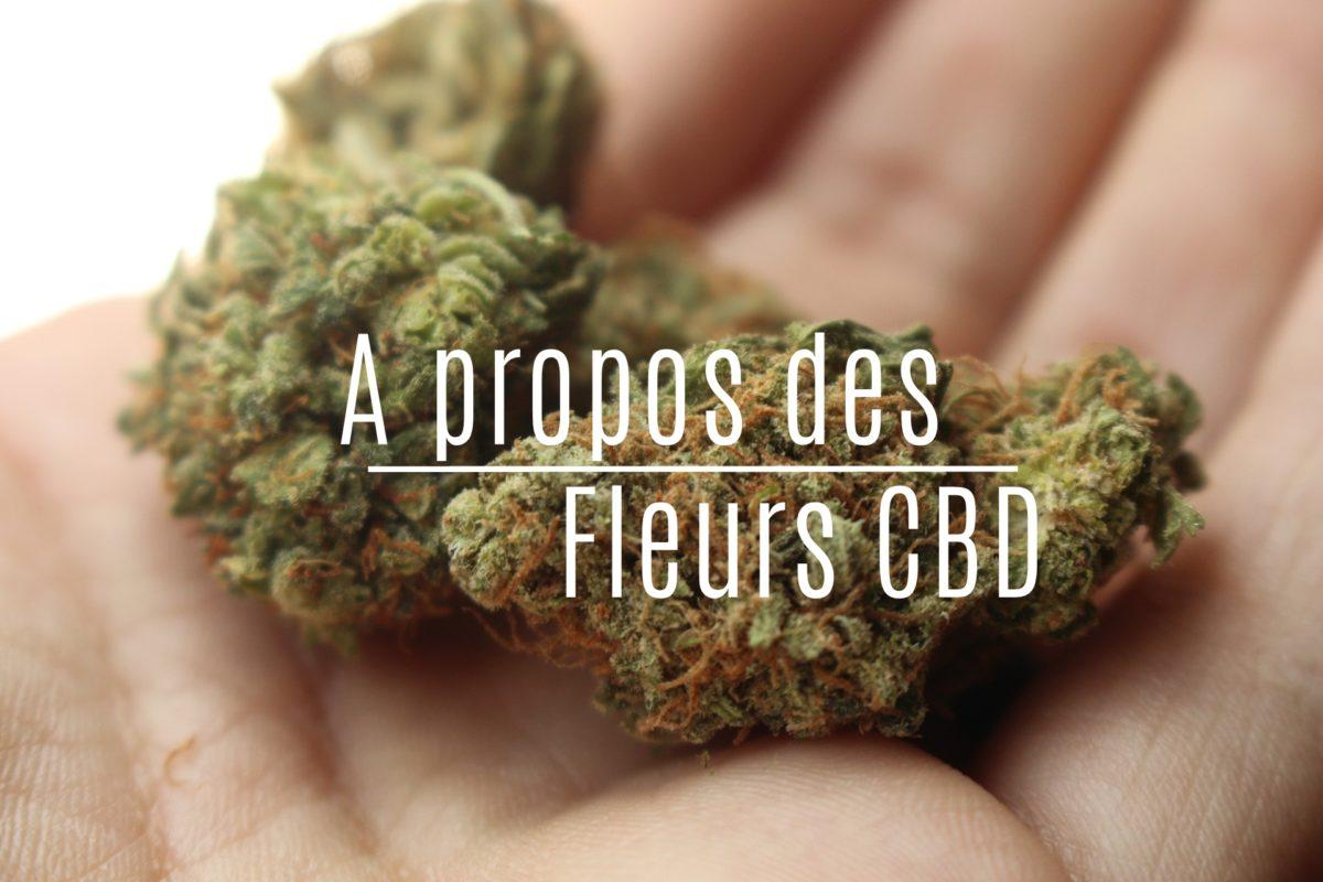 Les fleurs de CBD en France.